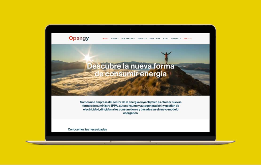 Desarrollo de la web de Opengy